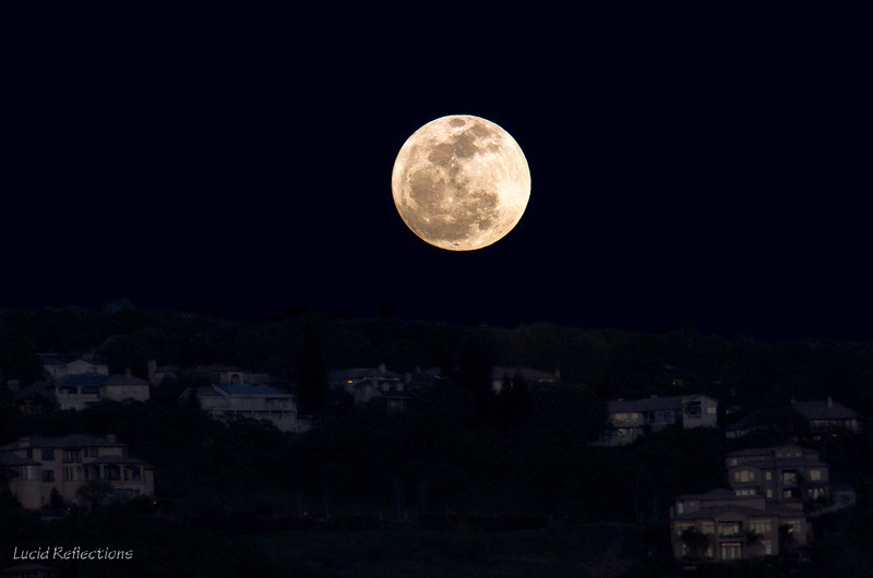 """Full moon rising above the hillside in March 2013. <br /> <br /> """"Art thou pale for weariness<br /> Of climbing heaven and gazing on the earth,<br /> Wandering companionless<br /> Among the stars that have a different birth,<br /> And ever changing, like a joyless eye<br /> That finds no object worth its constancy?""""<br /> ~ Percy Bysshe Shelley"""