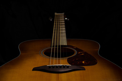 """""""After silence that which comes nearest to expressing the inexpressible is music."""" Words from Aldous Huxley to accompany this portrait of one of my guitars."""